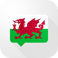 Icon for Welsh Verb Blitz app